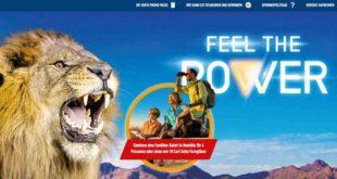 familien safari gewinnen